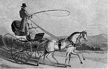 Regency Era Carriage: curricle